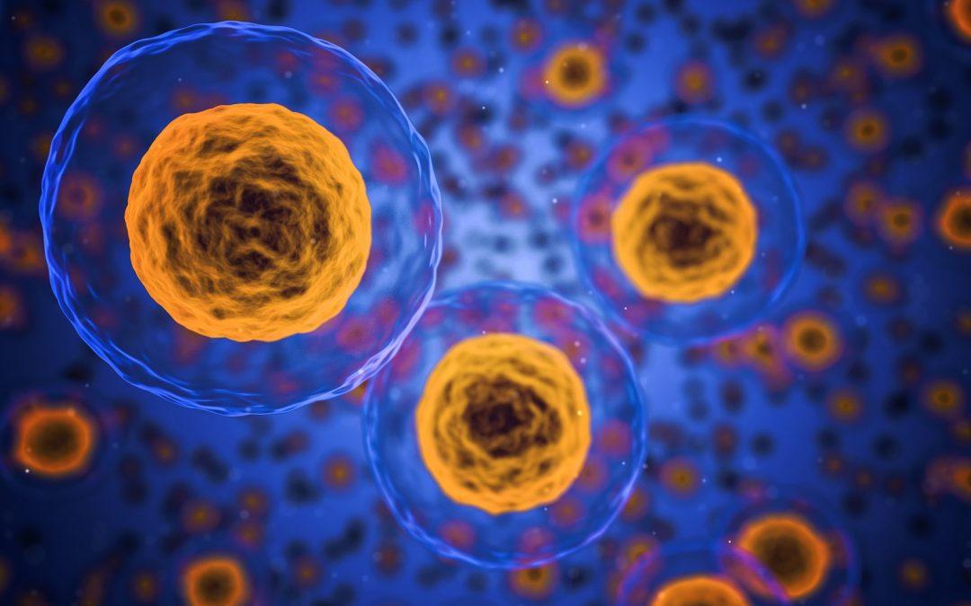 ¿Podremos tratar el envejecimiento como una enfermedad?